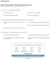 reviewing your knowledge photosynthesis related post of reviewing your knowledge photosynthesis
