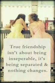 Friendship Quotes on Pinterest | Friendship Poems, Friendship Day ...