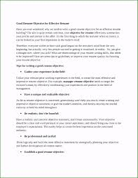 Resumes With Objectives Examples Of Career Objectives For A Resume Affordable Career