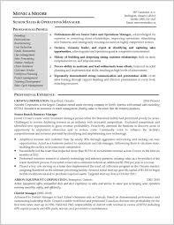 North American Resume Format Sample 268419 Cv And Resumes Formats
