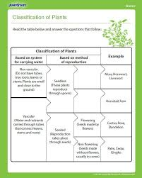 Best 25+ Animal classification worksheet ideas on Pinterest ...