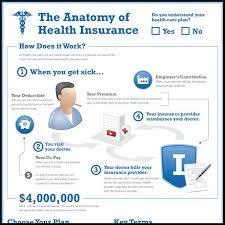 anatomy of health insurance infographic anatomy health insurance health maintenance organization