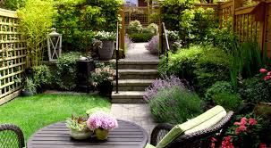 small space gardening tips tricks