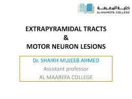 extrapyramidal tracts motor neuron lesions n
