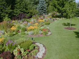 Small Picture Garden Design Garden Design with Small Shrubs Desert Landscaping