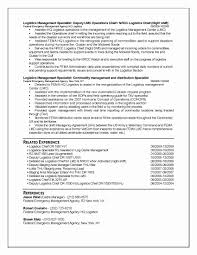 13 Beautiful Federal Government Resume Format Resume Sample