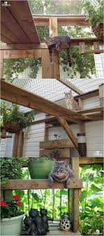 diy outdoor cat tree house how to build a catio for your cat fur kids