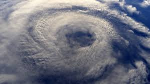 Image result for business hit by hurricane