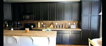 kitchens with dark painted cabinets. Delighful With Dark Painted Cabinets In Kitchen Black Cabinet Paint  Door And Kitchens With Dark Painted Cabinets I