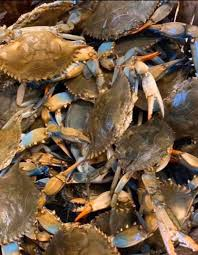 M and C Seafood - We have Live Crabs‼️ Large Males and... | Facebook
