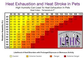 Heat Exhaustion Heat Stroke Chart Heat Exhaustion And Heat Stroke In Pets