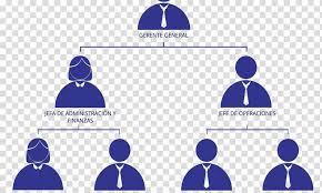 Organizational Chart Empresa Business Organizational