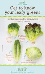 Leafy Greens Kids Veggies Infographic