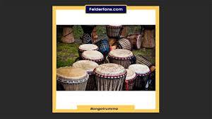Gambus biasa dimainkan sambil diiringi gendang. Contoh Alat Musik Membranofon Modern Dan Tradisional