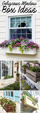 Best 25 Window Boxes Ideas On Pinterest Plants For Window Boxes Wire Window Box Liners