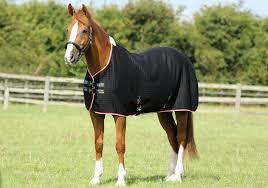 Premier Equine Premtex Horse Cooler Lauras Tack Room