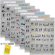 Free Exercise Ball Chart