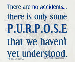 Purpose Quotes Interesting The Divine Purpose Is Our Divine Union With Its Divine Consciousness