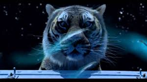 life of pi the tiger stares into the ocean life of pi the tiger stares into the ocean