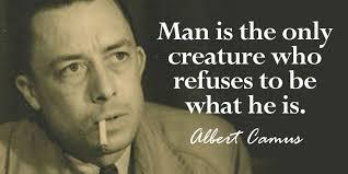 Albert Camus Quotes Cool 48 Best Albert Camus Quotes Sayings And Quotations Quotlr