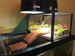 Water Filter Supplies Fish Tank Sand Substrate Turtle Tank Youtube Water Filter With