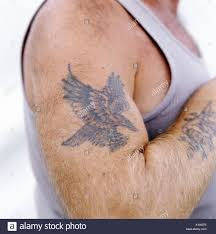 A Man With A Bird Eagle Tattoo On His Arm Stock Photo 3199860 Alamy