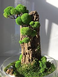 office bonsai tree. Fine Office Artificial Organic Plant Decoration For Office And Home  Bonsai Tree  Eco Throughout F