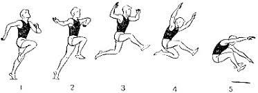 Тренировка по легкой атлетике Прыжок в длину согнув ноги