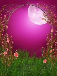 Fashion Lovers Outdoors Wedding Photography Background Attractive Moon Halloween Vinyl Backdrop