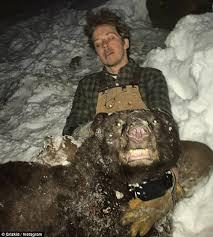 Dr Dolittle Scientist Wes Larson hugs polar black bears for a living    Daily Mail Online
