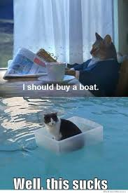 I Should Buy A Boat Cat | WeKnowMemes via Relatably.com
