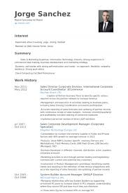Sales Director Corporate Division. International Corporate Account  Coordinator .Ecommerce Resume samples
