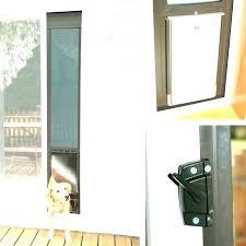 pet glass door pet door for glass door dog door for sliding glass door glass door pet glass door