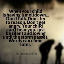 Pin by Priscilla Bryant on From photos | Parenting quotes, Kids and  parenting, Gentle parenting