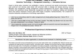 CEO COO Sample Resume Resume writer for CIO CEO CTO COO niveluni com  position essay examples