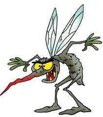 Sivri sineklerden kurtulmanın püf noktaları