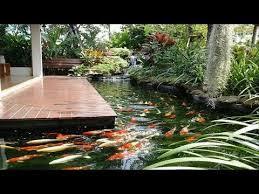 small garden ideas cool backyard pond