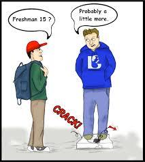 freshman 15 the retired foodaholic freshman 15 comic