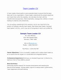 52 Best Of Resume Format For Bpo Awesome Resume Example Awesome