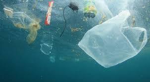 Europa avanza en la protección contra la basura marina - ecointeligencia -  cambia a un estilo de vida sostenible!