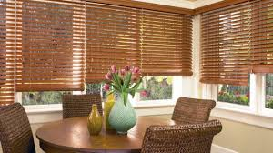 casual living room window treatments. Modren Treatments Remarkable Tropical Window Treatments Of Casual Dining Room Curtains For  New Ideas Douglas Living