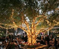 tree lighting ideas. 13 Unique Ideas To Use At Your Next Outdoor Party Inside Backyard Tree Lighting 19989 G