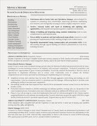 Program Analyst Resume Example Free Resume Examples