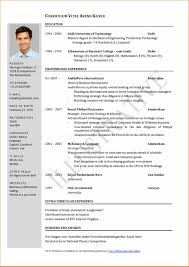 Endearing Job Application Resume Model With Additional Resume