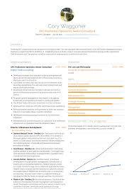 Senior Consultant Resume Samples Templates Visualcv