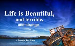 Beautiful Life Quotes Gorgeous Life Is Beautiful Quotes And Sayings 48greetings