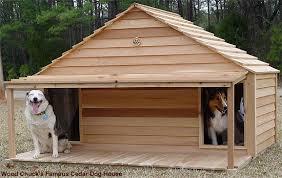 double dog house plans. Double Dog House Plans Lovely 16 DIY Houses N