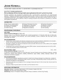 Sample Resume For Operations Manager In Banking Save Sample Resume