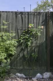 home garden steel wrought iron garden