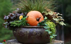 Fall Container GardensContainer Garden Ideas For Fall